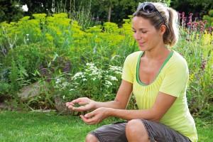 Mulchen: die feinen Rasenreste bleiben unsichtbar liegen