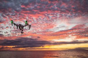 Auf Mallorca sind Mücken zur Plage geworden. Mit Foto-Drohnen sollen Problemgebiete erkannt und schließlich durch konventionelle Bekämpfungsmittel eingedämmt werden. Foto: Shane Perry / StockSnap.io