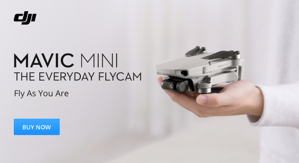 DJI Mavic Mini – The Everyday Flycam
