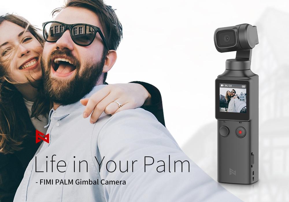 FIMI Palm 2020