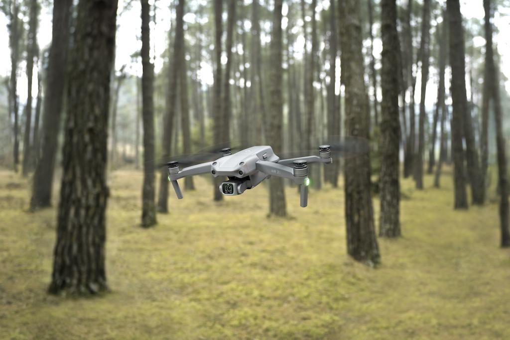 DJI Air 2S im Wald